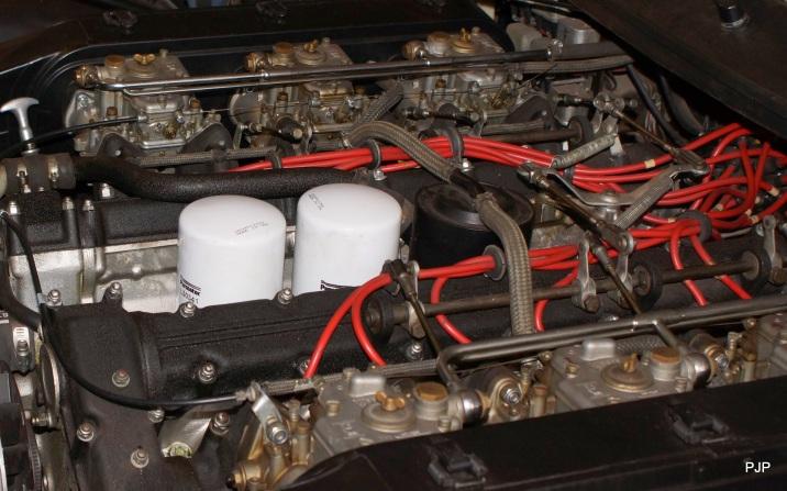 DSC02529