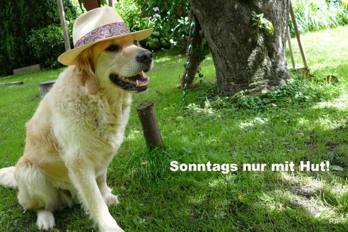Bax_hat_2