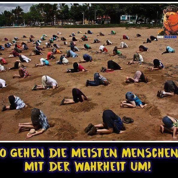 kopf-in-den-sand