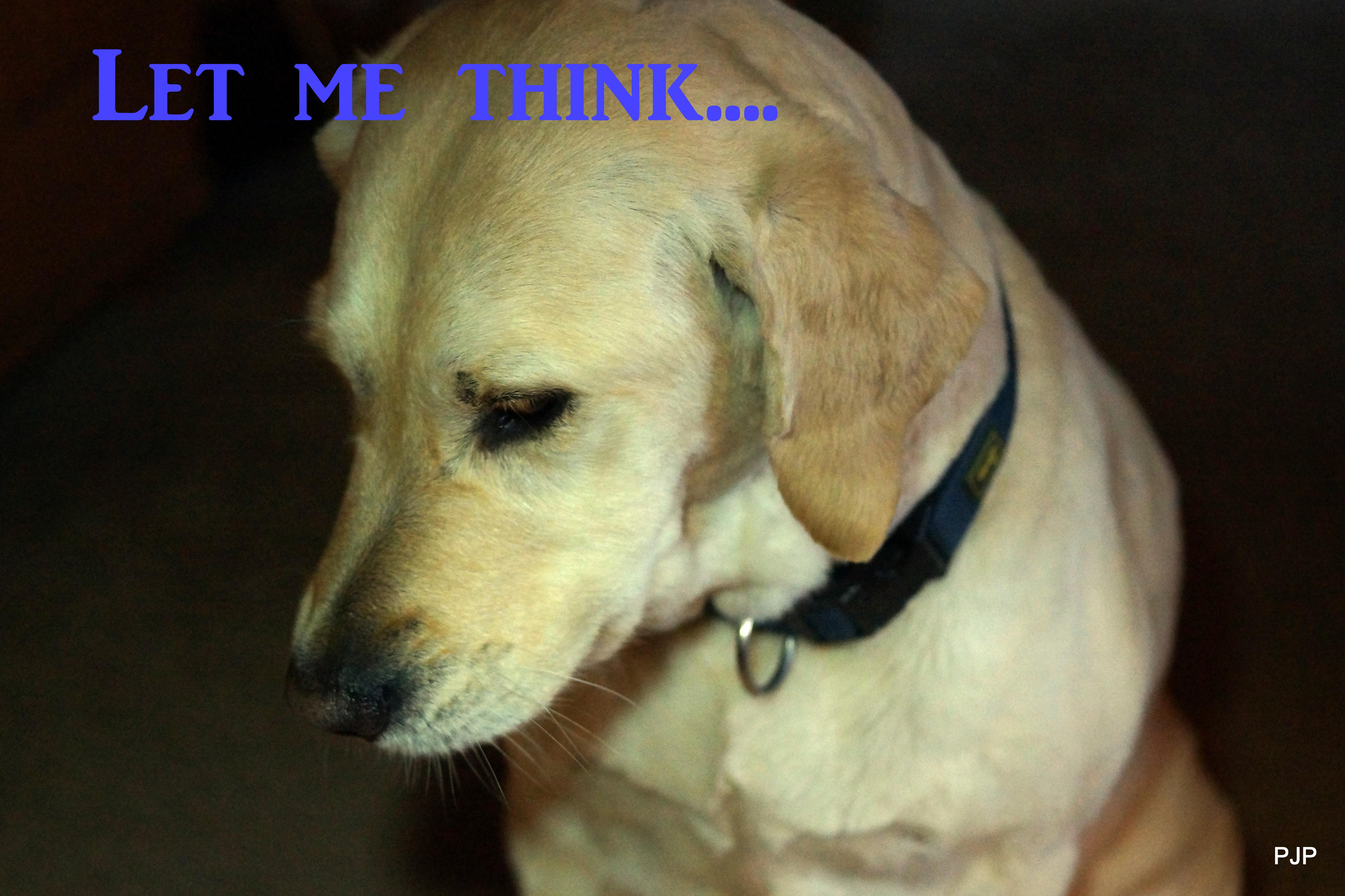 003-Let me think..