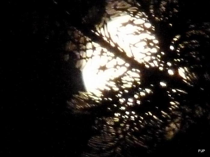 001_Mond_4