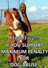 fünf gegen Missbrauch