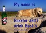 001_BaxxBeck_2