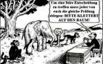16-001_Chancengleichheit_Einstein