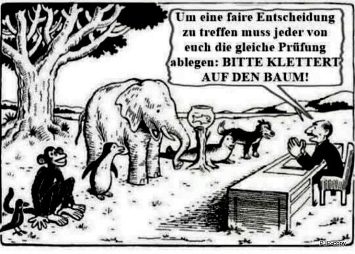 001_Chancengleichheit_Einstein