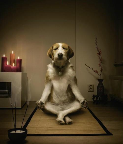 001_Meditation