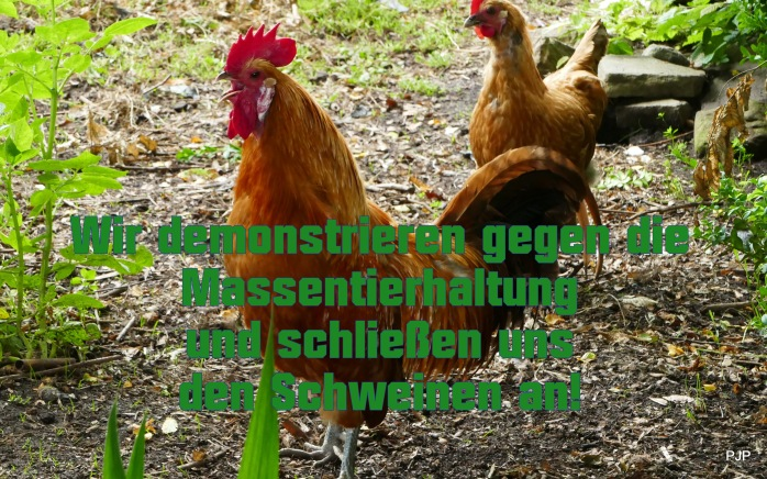 2-001_Aufstehen