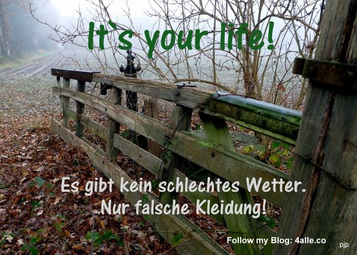 001_altesGatter_Blog