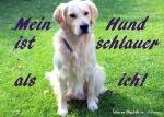 001_Baxschalauer_ich
