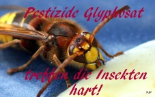 6-001_PestizideG01